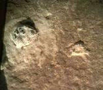 Следы древних людей. Увеличенная фотография, со следом обуви и трилобитом на верхней левой стороне. (Фотографии