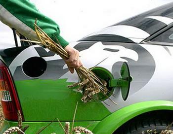 Фото:  wunderground.com