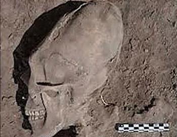 В Мексике обнаружено кладбище инопланетян. Фото:Daily Mail