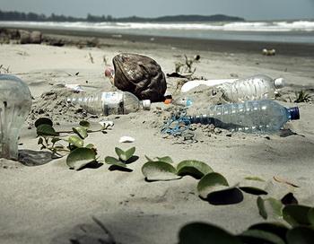 Учёные США выяснили, как влияет пластмасса на обитателей моря. Фото: epSos.de/flickr.com