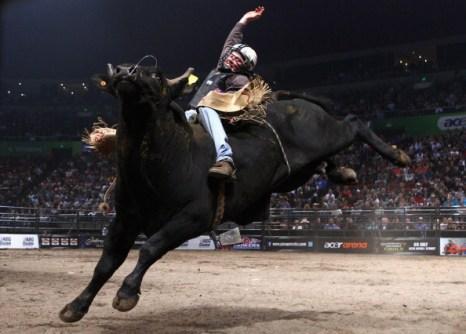 Фоторепортаж с австралийского родео PBR Cup Series с быками. Фото: Ryan Pierse/Getty Images