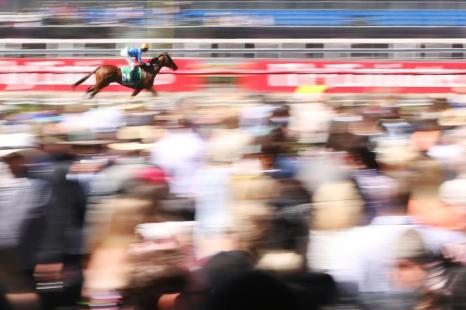 В Австралии 4 октября 2013 года прошёл второй день скачек Кубка Мельбурна за главный трофей мероприятия. Фото: Michael Dodge / Getty Images