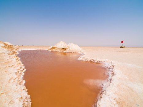 Солёное озеро Шотт-эль-Джерид, Тунис. Фото: Lukasz Misiek/Photos.com