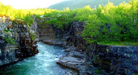 Каньон реки Абиску. Абиску — национальный парк (ландшафтный заповедник) возле населённого пункта Абиску на севере Швеции. фото: q8/commons.wikimedia.org