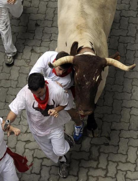 Загон быков во время праздника Сен-Фермин в Памплоне 8 июля 2012 г. Фото: RAFA RIVAS/AFP/GettyImages