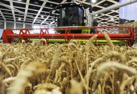 В Берлине проходит международная сельскохозяйственная выставка. Фото:  JOHN MACDOUGALL/AFP/Getty Images