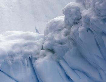Арктика. Фото: Rodrigo Arangua. /AFP/Getty Images