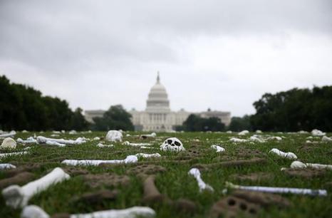 Перед Капитолием в столице США выложили один миллион костей. Фото: Mark Wilson/Getty Images