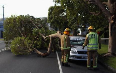 Фоторепортаж о штормовой погоде в Окленде, Новая Зеландия. Фото: Phil Walter/Getty Images