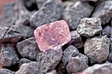Вновь побит рекорд среди драгоценных камней. Алмаз Argyle Pink Jubilee. Фото: new.kuwaittimes.net