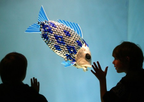 Рыба-робот в морских водах Испании. Механическая рыба в аквариуме Лондона. Фото: ADRIAN DENNIS/AFP/Getty Images