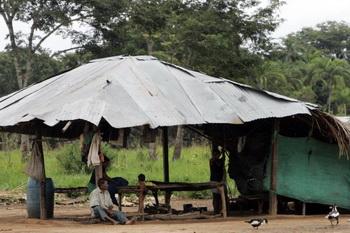 В Колумбии в сельской зоне департамента Гуавьяре обнаружен и ликвидирован лагерь повстанцев, в котором готовили несовершеннолетних боевиков. Фото: RODRIGO ARANGUA/AFP/Getty Images