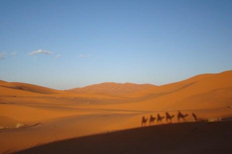 Пустыня Сахара. Фото: Brandon Prince/flickr.com