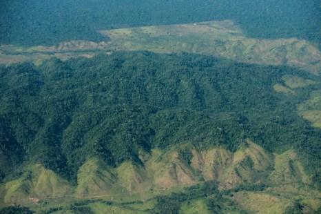 Леса северной Бразилии. Фото: YASUYOSHI CHIBA/AFP/Getty Images