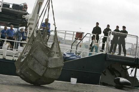 В Испании из моря выловили тонну кокаина. Фото: DESIREE MARTIN/AFP/Getty Images
