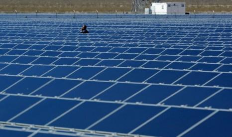 В США начала работать крупнейшая солнечная электростанция. Фото: Ethan Miller/Getty Images