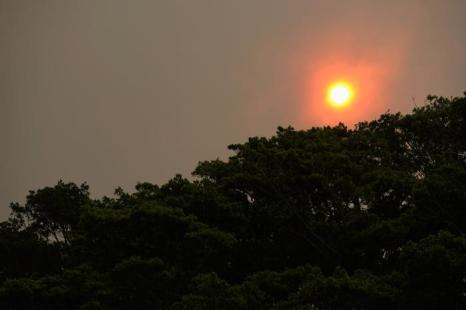 Столица Австралии Сидней во второй половине дня 17 октября 2013 года погрузилась в дым от лесных пожаров, которые бушуют в западном пригороде Спрингвуд. Фото: Brett Hemmings/Getty Images