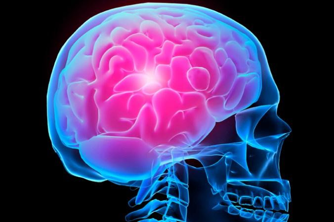 исульт, головной мозг, мифы