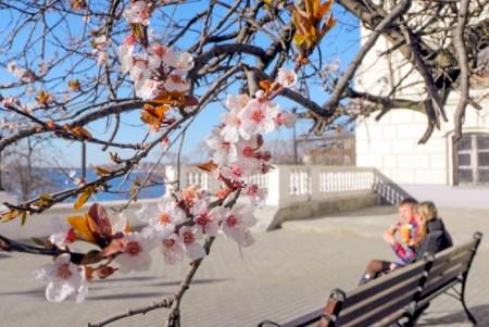 Набережная Корнилова. Фото: Алла Лавриненко/Великая Эпоха