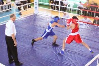 бокс, кубок Спартака