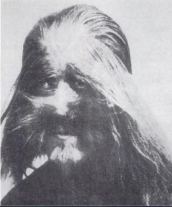 Hairy-Man-Li-Baoshu-480x577