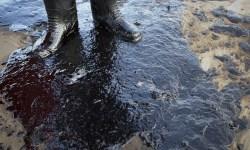 Якутия, разлив нефти