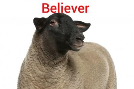iStock_000018813657_Full-believer-580x387