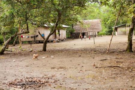 The-Shuar-camp
