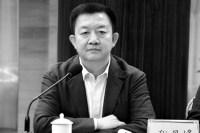 политические связи Чэн Даньфэн