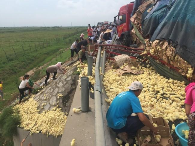 25 августа 2015 года. Скоростная трасса Жунма в провинции Шаньдун. Фото: epochtimes.com