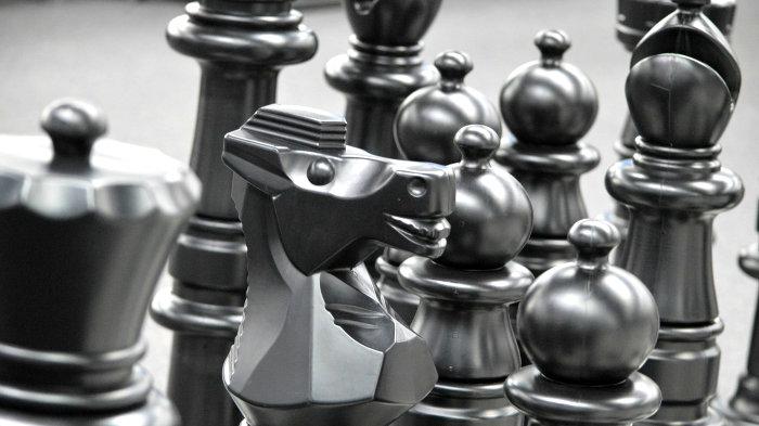 шахматы, развитие мозга