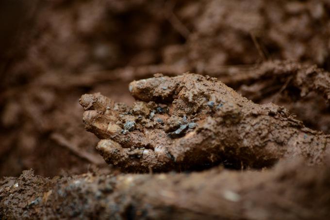 Сейчас это место называют «Долиной смерти». Там погребены более 200 тысяч человек. Фото: NOEL CELIS/AFP/Getty Images