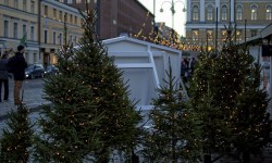 елка, новый год, елочный базар