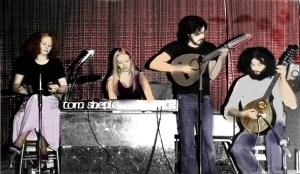 Tom Shepley Band