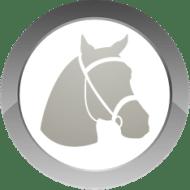 EPONIA - HORSE