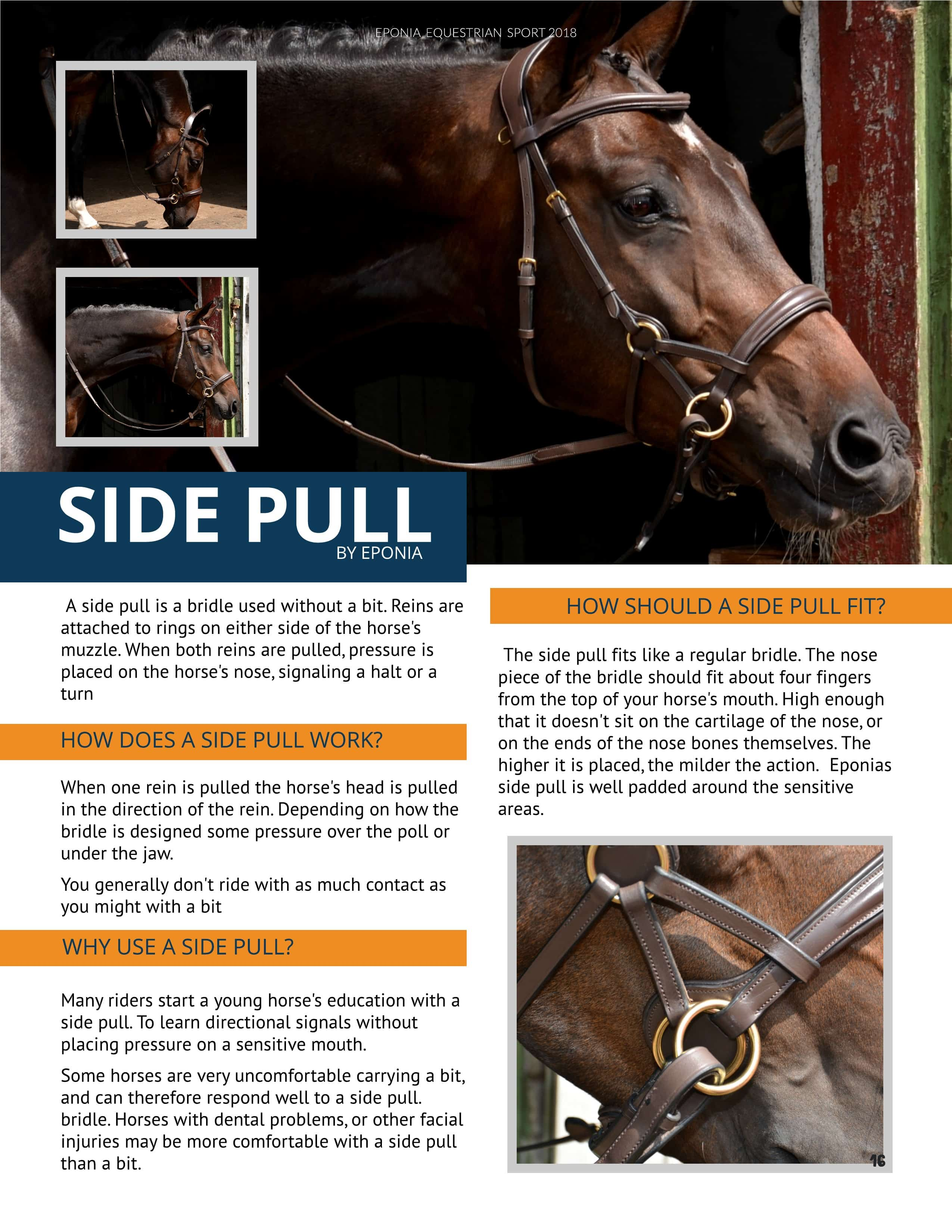 Bitless and bitted 2 in 1 bridle for young horse