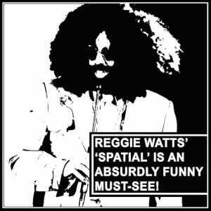 Reggie Watts Spatial on Netflix