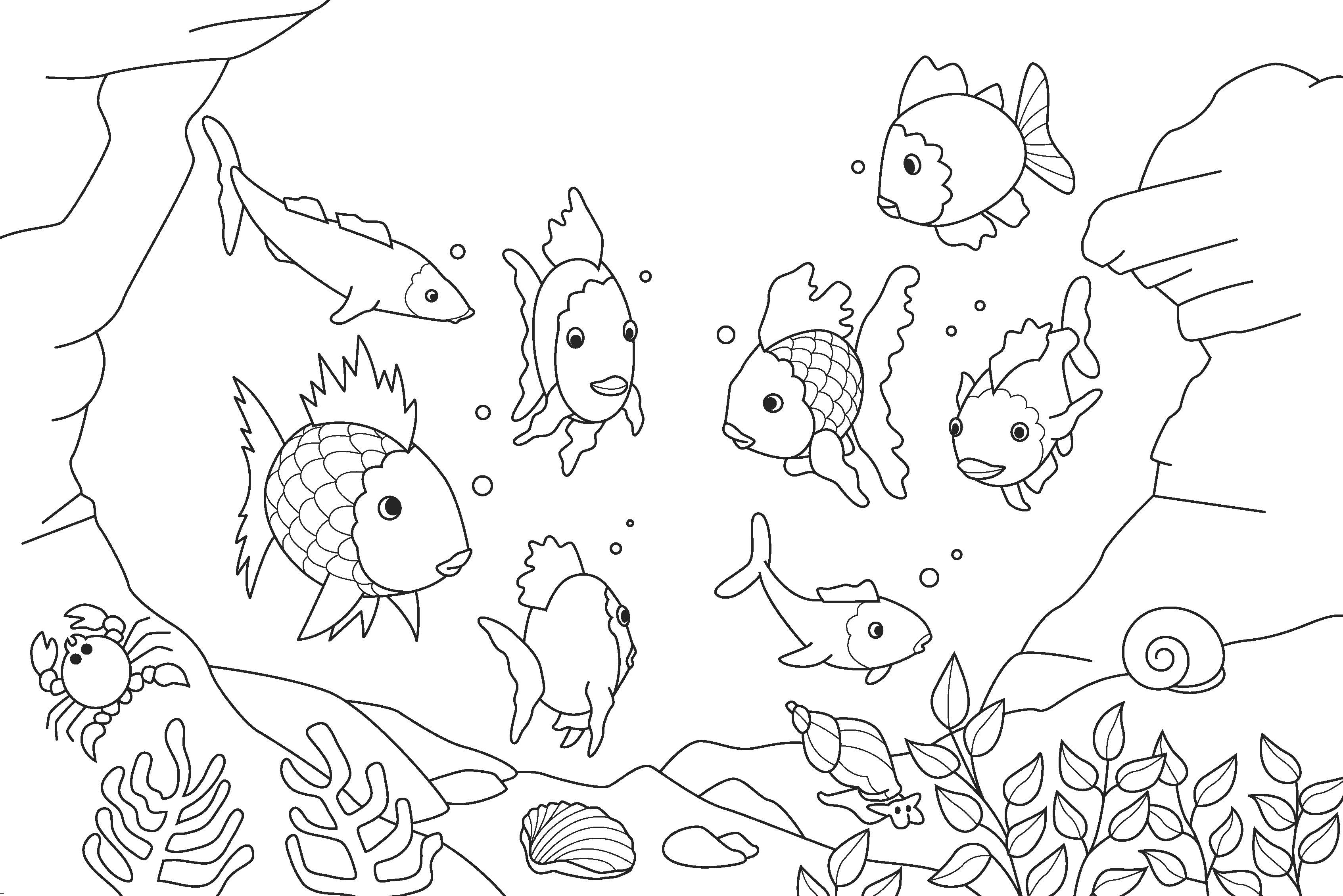 Fish Coloring Pages Print Coloring Pages Kids Printable