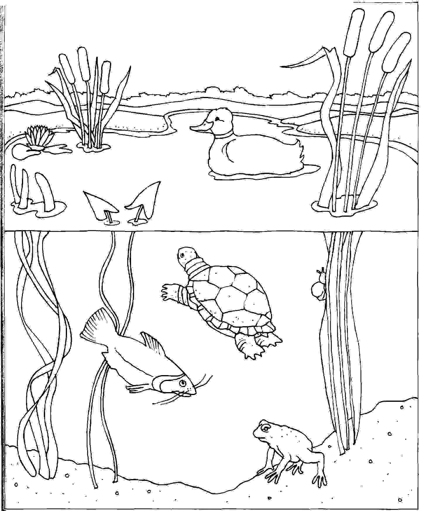 Under Water Coloring Pages Spring Coloring Pages Free Printable
