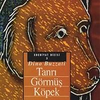 Tanrı Görmüş Köpek  / Dino Buzatti