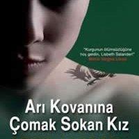 Arı Kovanına Çomak Sokan Kız / Stieg Larsson