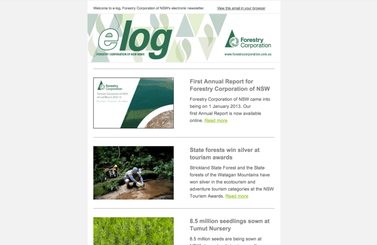 Forestry Corporation NSW Newsletter