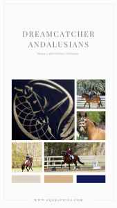 Stunning Custom Logo Featuring Andalusian Stallion With Dreamcatcher & Feather