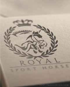 Looking for Letterhead Ideas for Your Equine Business? Check Out This Chic Show Jumper