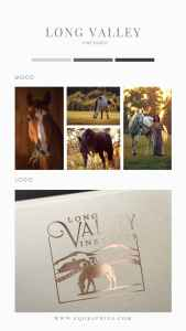 Wine label inspiration with a horse silhouette - logo by EQ Graphics