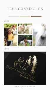 Feminine Morgan Horse Logo Inspired by Liberty Horse Trainer's Work with Women