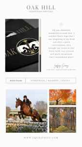 Tradition Meets Modern in Classic Foxhunting Logo Design for Hunter/Jumper Barn