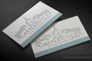 Sporthorse Training Facility's Castle & Jumping Horse Logo Design