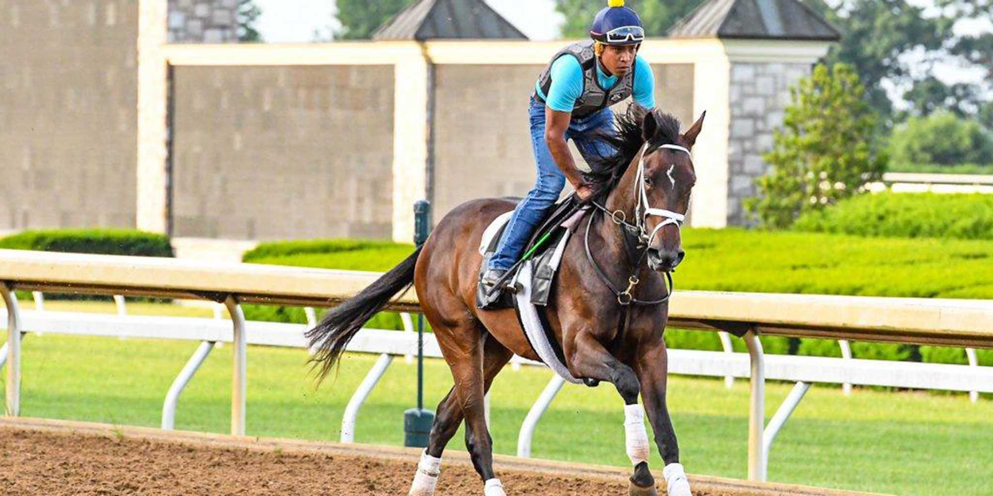 EQ Graphics | Jockey Galloping Thoroughbred Racehorse on Track