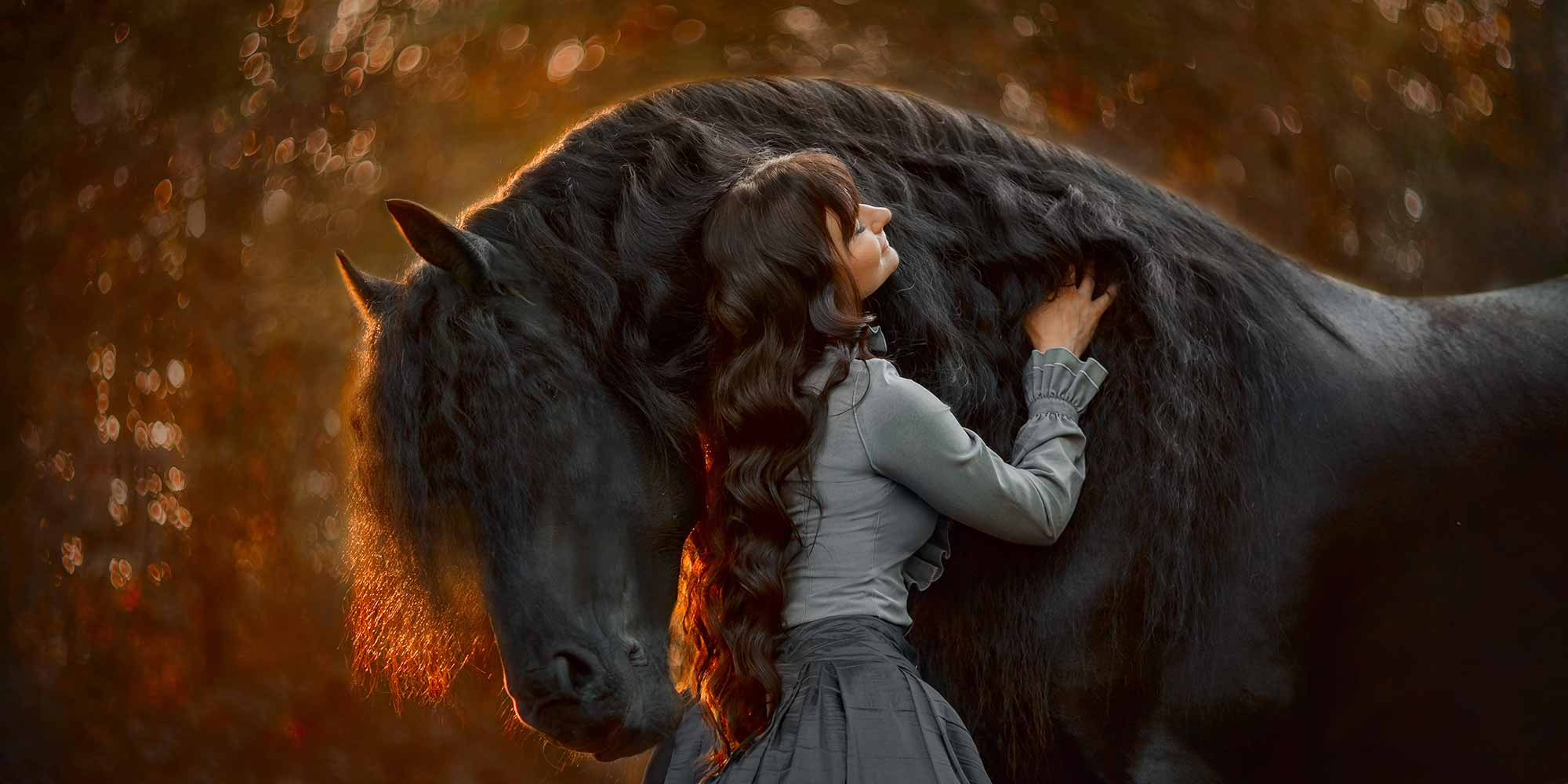 EQ Graphics | Sunset Photography Taken of a Friesian Horse and a Girl